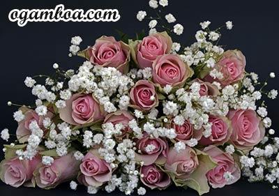 florerias en Zacatecas a domicilio