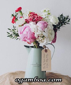 obsequios florales en zacatecas