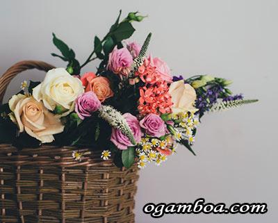 mejores florerias en xochimilco con servicio a domicilio