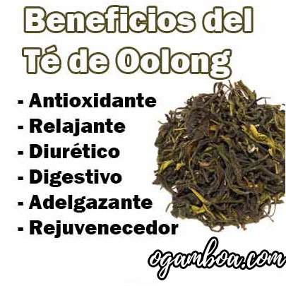 te oolong beneficios y contraindicaciones